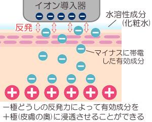 イオン導入の作用原理のイメージ画像