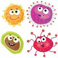 細菌のイラスト