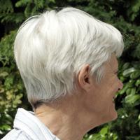白髪の画像・写真