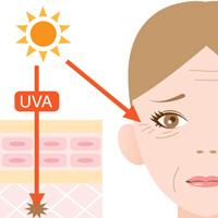紫外線UVA