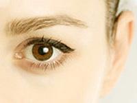 目や眉毛の画像
