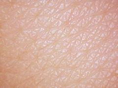 キメが整った肌
