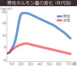 男性ホルモンの変化グラフ