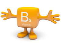 パントテン酸(ビタミンB5)